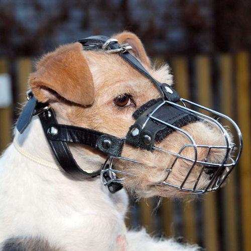 small dog basket muzzle