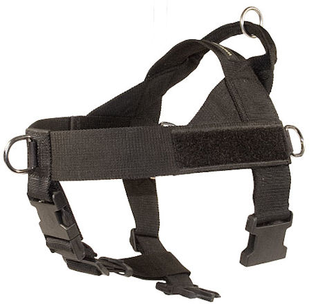 all weather dog harness better dog control UK