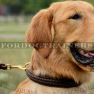 Braided Dog Collar for Golden Retriever Choke Design