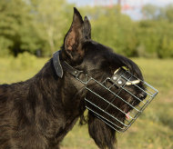 Reliable Riesenschnauzer wire basket muzzle for universal use