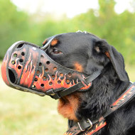 "Rottweiler Muzzle with Original Painting ""Flame"""