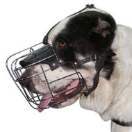 Sarmatian Mastiff Muzzle | Wire Dog Muzzle for Sarmatian Mastiff