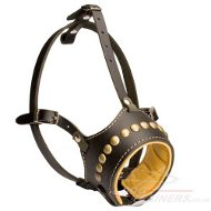 Royal Studded Leather Dog Muzzle, Padded muzzle for dog, UK