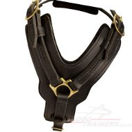 Soft Leather Dog Harness UK Bestseller for Large Dogs, Padded