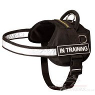 Reflective Dog Harness UK | High Vis Dog Harness
