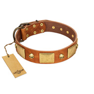 """Mutt The Daredevil"" Premium Natural Leather Dog Collar With Adornment FDT Artisan"