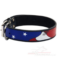 "Unique Dog Collar ""American Pride"" Handpainted"