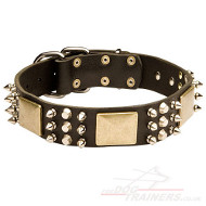 Leather Dog Collar Best Design | Dog Collar for Bright Style!