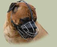 Best Dog Muzzle for Bullmastiff | Bullmastiff Muzzle Best Choice