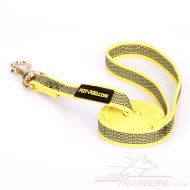 "Stylish Water-Resistant Nylon Training Lead For Dogs 0.8"" Width"