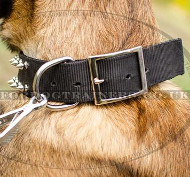 Adjustable Dog Collar with a Buckle and Glancing Spiked Design