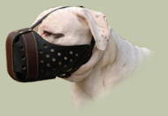 Bulldog Muzzle for Agitation | New Design Leather Dog Muzzle UK