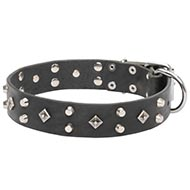 Attractive Designer Dog Collar Leather with Studded Style