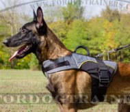 Warm Vest Style Dog Harness with Carrying Handle for Malinois