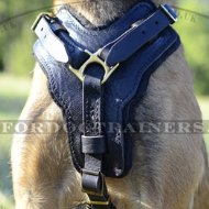 Padded Dog Harness for Malinois | Bestseller Leather Dog Harness