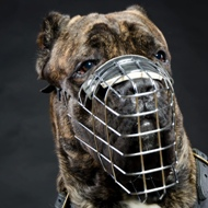 Best Cane Corso Dog Muzzle | Metal Wire Dog Muzzle for Mastiff
