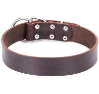 """Universal Use"" Brown Adjustable Dog Collar"