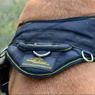 Best Dog Harness for Dogue De Bordeaux, UK Bestseller