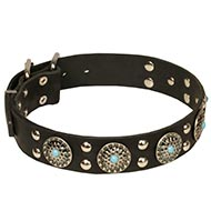 NEW Design Dog Collars with Silver-Like Medals and Blue Stones