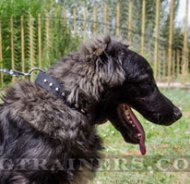 """Sun Pyramids"" Nylon Dog Collar with Buckle Caucasian Shepherd"