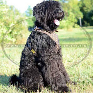 Dog Harness for Black Russian Terrier for sale