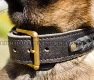 Braided Dog Collar for Belgian Shepherd | Strong Dog Collar 2Ply