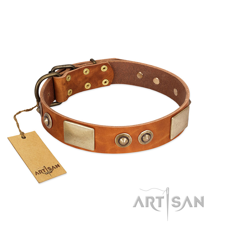 Light-Tan Studded Leather Dog Collar by Artisan