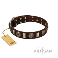 "Chic Brown and Gold Dog Collar ""Skull's Adventure"" FDT Artisan"