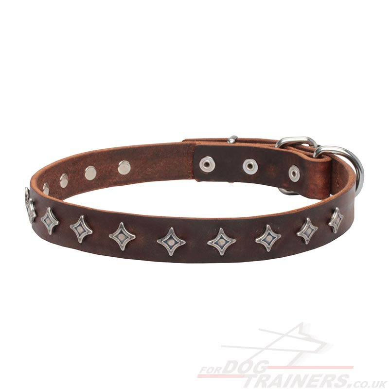 designer dog collars - photo #17