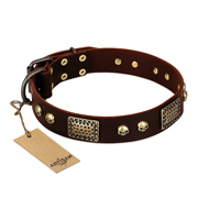 "Brown Dog Collar with Brass Finery ""Magic Amulet"" by FDT Artisan"
