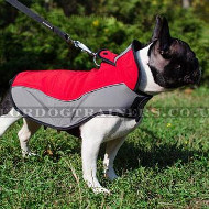 Warm Dog Harness-Vest for French Bulldog Walking in Winter