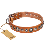 "Stylish Dog Collars of Natural Leather ""Daily Chic"" FDT Artisan"
