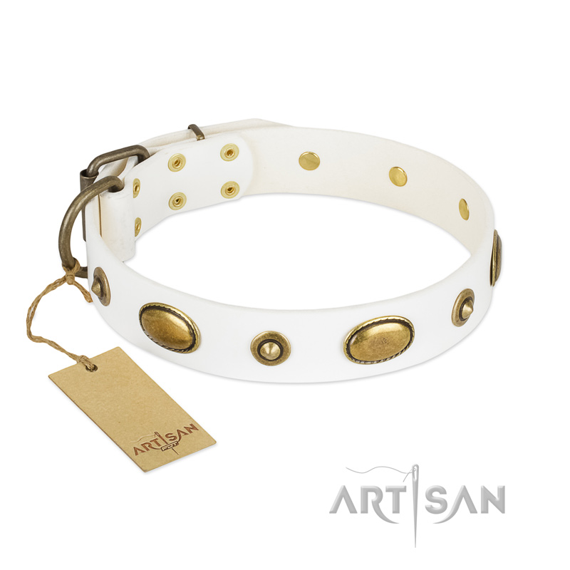 Leather Dog Collar by NEW Artisan Collection