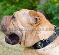 Leather Dog Collars Royal Design for Shar Pei Dogs