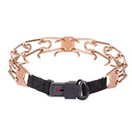 HERM SPRENGER Curogan Dog Collar 4 mm Wire + Click Lock Buckle