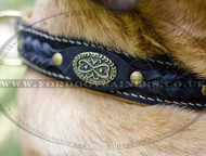 Cane Corso Mastiff Dog Collar | Royal Dog Collar Nappa Padded