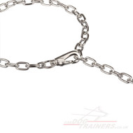 The Best Dog Chain Collar with Snap Hook by Herm Sprenger