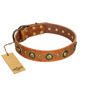 Noble Style Studded Tan Leather Dog Collar by FDT Artisan