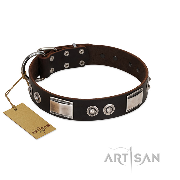 Dark Brown Leather Dog Collar with Studs