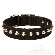 Nylon Collar for Dogs With Shiny Pyramids