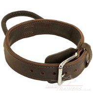 Dog Leather Collar with Handle and Chromium Plated Hardware