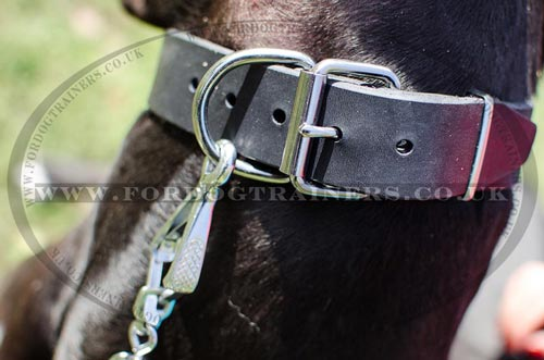 D Ring Leather Dog Collar for Big Dogs