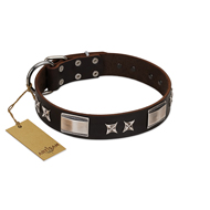Designer Dark Brown Leather Dog Collar FDT Artisan