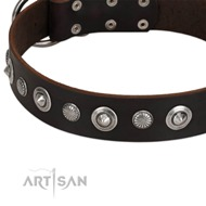 "Brown Studded Dog Collar ""Dark Chocolate"" FDT Artisan"