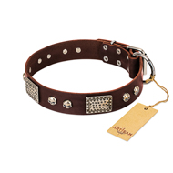 "Brown Leather Dog Collar ""Pirate Skull"" FDT Artisan"