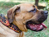 Designer Dog Collars with painting Flame for Cane Corso
