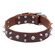 1.6 in Wide Leather Dog Collar of Funky Pirate Style