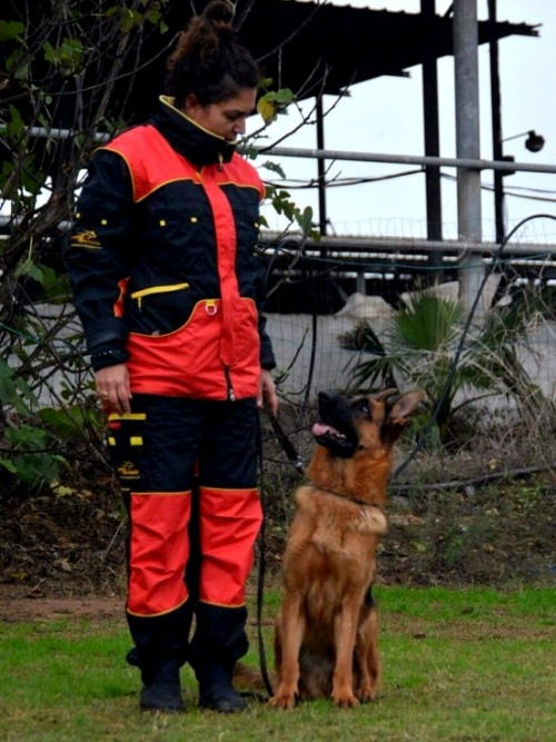 New Dog Anti Scratch Suit for Men and Women