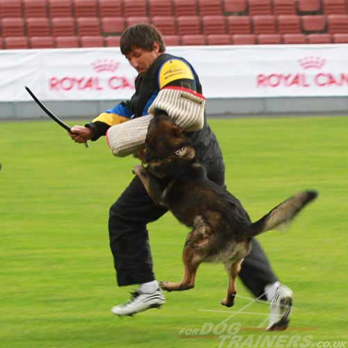 schutzhund dog training suit
