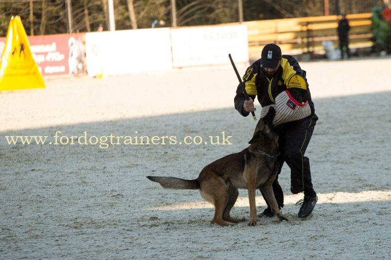 IGP Dog Training Stick
